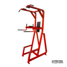 Dip / Pull up / Chin up station (K3X)