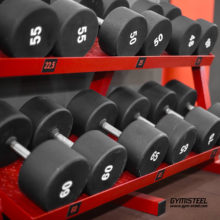 Fixed Weight Dumbbells (Z15)